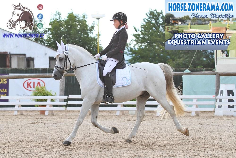 Pony roku 2014